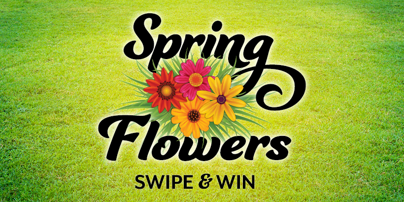 Spring Flowers Swipe & Win